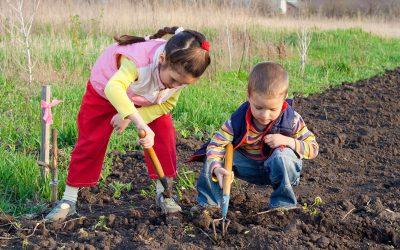 Extra betaling jonge landbouwers en eerdere zzp-activiteiten
